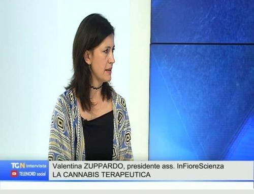 Cannabis terapeutica, pazienti senza cure: l'allarmeL'associazione inFioreScienza sensibilizza l'opinione pubblica per garantire la continuità terapeutica